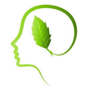 Ekologiya-mozga